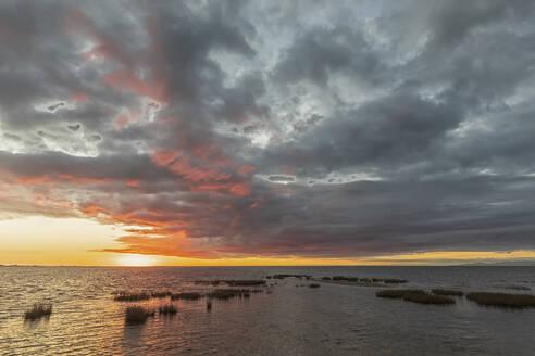 New Zealand, Tasman District, Puponga, Golden Bay at cloudy sunrise - FOF11392