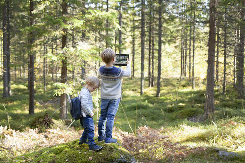 Toddler with brother taking photograph of forest - CUF53710