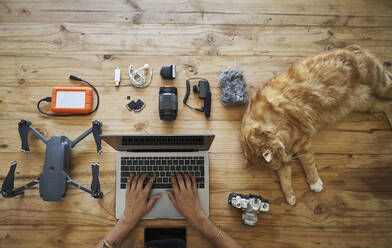 Person sitting at table with photografic equipment and ginger cat, using laptop, overhead view - VEGF01220