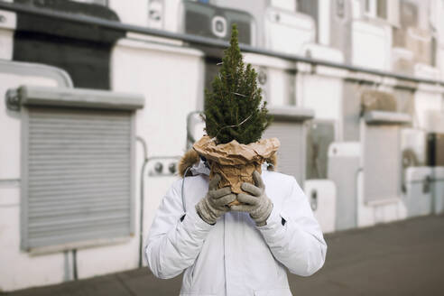 Young man hiding his head behind Christmas tree on the street - EYAF00776