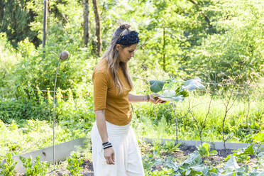 Woman gardening - TCF06236