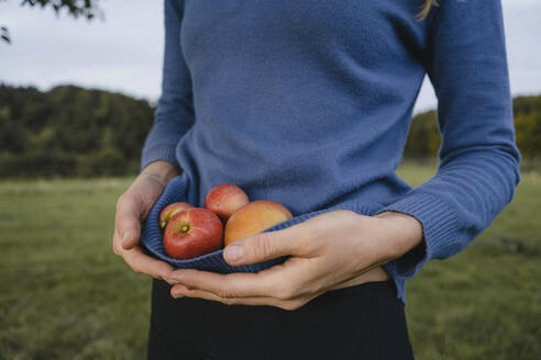 Woman carrying apples in her sweater in the countryside - JOSF04138