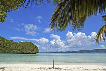 Palau, Rock Island, Tropical beach - GNF01539