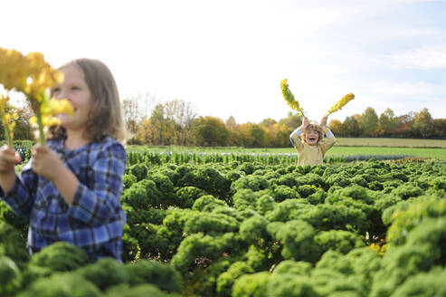 Girl and boy in a kali field, leaves as rabbit ears - ECPF00777