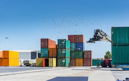 Reach stacker and shipping containers in dock - CUF54387