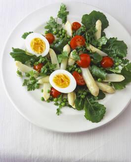 Asparagus salad with Italian dandelions, peas and eggs - PPXF00292