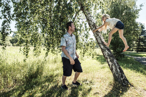 Father watching daughter climbing a birch trunk in park - WFF00233