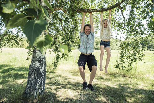 Portrait of smiling father and daughter hanging on a branch of a birch tree - WFF00239