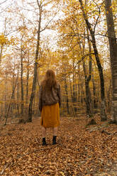 Back view of redheaded young woman standing in autumnal forest - AFVF04883
