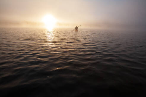 Solo paddling on a misty pond at sunrise. - CAVF72861