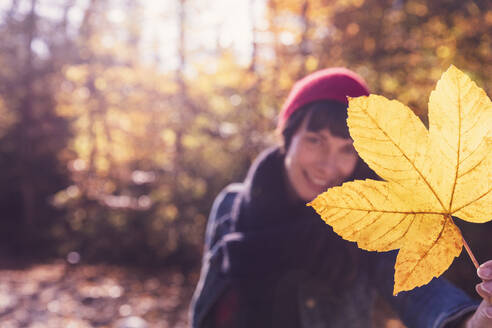 Woman wearing red woolly hat holding yellow autumn leaf - DHEF00022