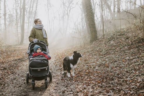 Mother with children and border collie during forest walk in autumn - DWF00535