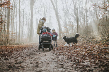 Mother with daughters and border collie during forest walk in autumn - DWF00541