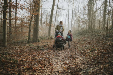 Mother with daughters and border collie during forest walk in autumn - DWF00544
