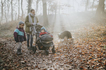 Mother with children and border collie during forest walk in autumn - DWF00553
