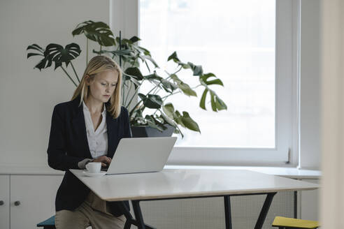 Young businesswoman using laptop in office - GUSF03321