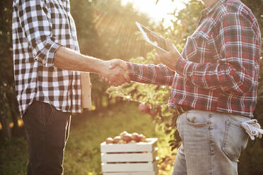 Fruit growers agreeing on a deal, shaking hands - ABIF01272