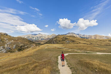 New Zealand, Female hiker standing in middle of winding road admiring landscape of Cave Stream Scenic Reserve - FOF11483