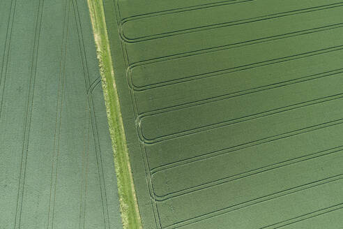 Germany, Bavaria, Franconia, Aerial view of green fields - RUEF02573