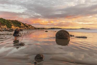New Zealand, Oceania, South Island, Southland, Hampden, Otago, Moeraki, Koekohe Beach, Moeraki Boulders Beach, Moeraki Boulders, Round stones on beach at sunrise - FOF11683