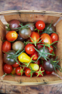 Colorful tomatoes in basket - JOHF06176