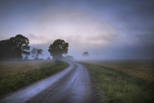 View of foggy landscape - JOHF06682