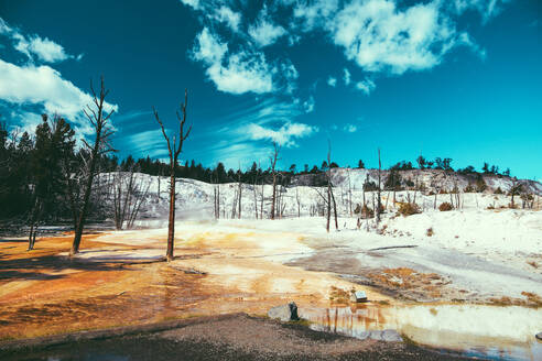 Yellowstone National Park Landscape Geysers, Hotsprings USA, Wyoming - CAVF73818