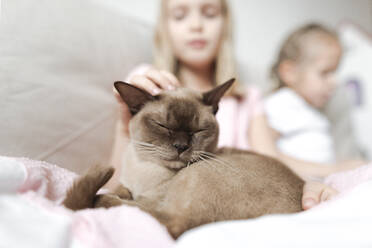 Portrait of Burmese cat with eyes closed relaxing with girls on the couch - EYAF00916
