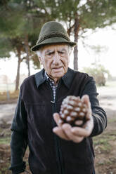 Old man looking at pine cone in his hand - JRFF04126