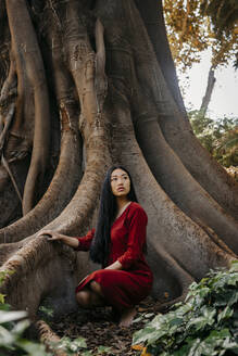 Beautiful young woman wearing a red dress crouching at a tree with large roots - TCEF00131