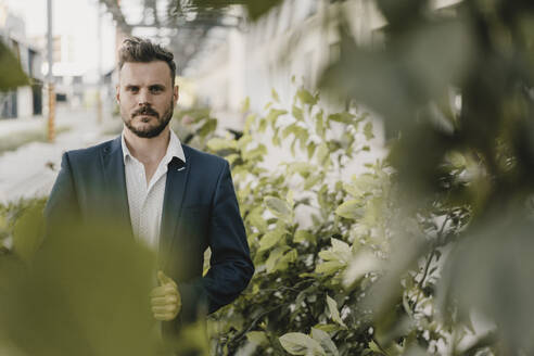 Portrait of smart businessman between plants - KNSF07602
