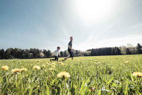 Father and little son having fun together on a meadow in spring - WFF00288