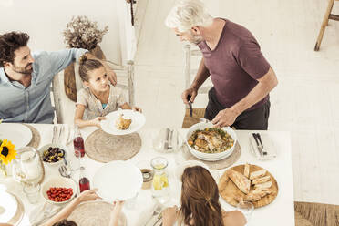 Family and friends having lunch together - SDAHF00640