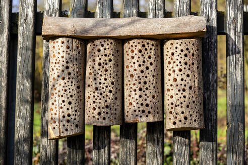 Self-built bee hotel on a wooden fence - NDF01030