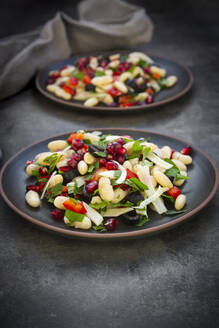 Two plates ofcannellinibean salad with fennel, bell pepper, black olives, pomegranate seeds, mint and parsley - LVF08650