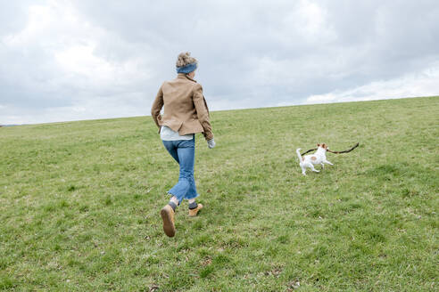 Back view of mature woman playing with her dog on a meadow - VYF00018