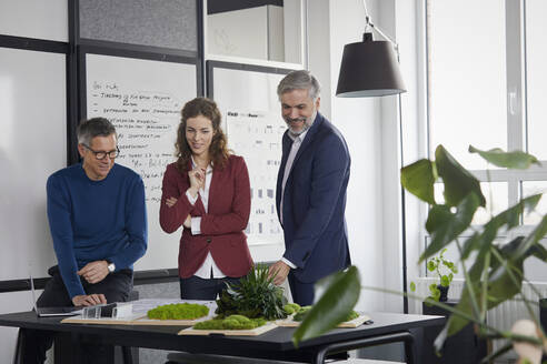 Two businessmen and businesswoman working together on a project in office - RBF07111