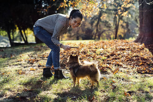 Happy young woman playing with dog in a park - SODF00729