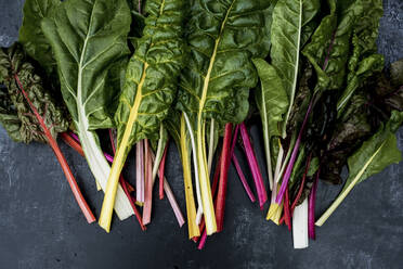 High angle close up of a bunch of freshly picked Swiss rainbow chard on grey background. - MINF14430