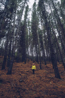 Man standing in forest, Spain - RSGF00244