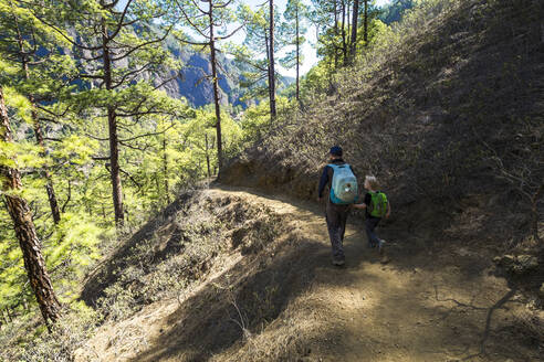 Back view of father walking with his little son on a hiking trail, La Palma, Canary Islands, Spain - IHF00297