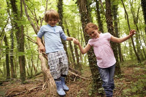 Children walking hand in hand in forest - AUF00194