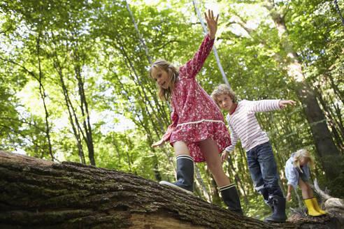 Children balancing on log in forest - AUF00212