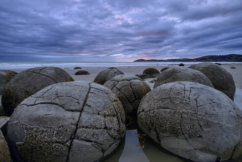 New Zealand, Otago, Moeraki, Close-up of cluster of Moeraki Boulders lying on Koekohe Beach at cloudy dusk - RUEF02654