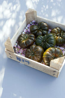 Germany, Green tomatoes in wooden box - GISF00563