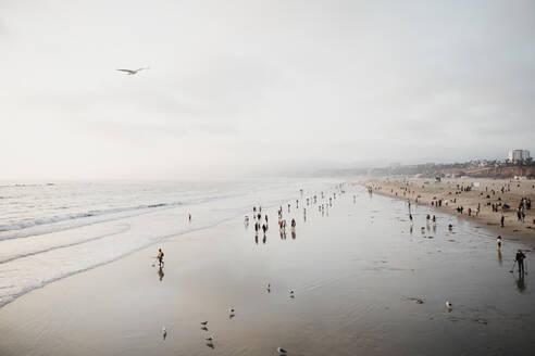 View to Santa Monica Beach, Los Angeles, USA - LHPF01212