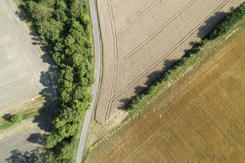 Germany, Bavaria, Drone view of country road cutting through yellow countryside fields in summer - RUEF02715