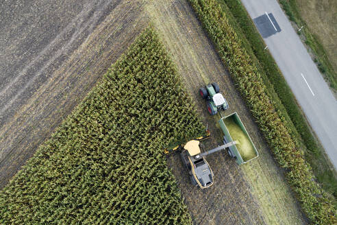 Germany, Bavaria, Drone view of combine and tractor harvesting corn - RUEF02727