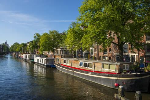 Grachtenhäuser in der Brouwersgracht, Amsterdam, Provinz Nordholland, Niederlande, - LBF03029