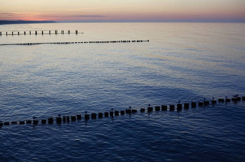 Germany, Mecklenburg-Western Pomerania, Zingst, Silhouettes of groynes on Baltic Sea coast at dusk - JTF01515